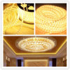 Indicatore luminoso della stringa di SMD5050 LED nella decorazione di illuminazione del LED per il partito