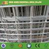 China-Fabrik für das geschweißte Ineinander greifen verwendet für Tier und Bauernhof