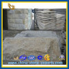 G682 Rust Gold Granite Mushroom Stone для Wall Cladding (YQZ-GT1007)