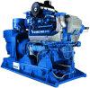 600kw de Generator van het Biogas van de Riolering van Duitsland Mwm