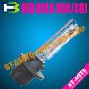 Luce NASCOSTA auto di Headlamp/HID (NASCOSTA 880)