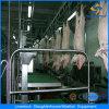 Оборудование кровопускания свиньи машины убоя свиньи автоматическое