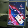 Acrylic montado en la pared Sheet LED Light Box para Advertizing Display