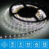 CE SMD 3528 60 LED per Metro LED striscia flessibile