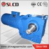 Kシリーズコンバーターのミキサーのためのインライン螺旋形ギヤ減力剤のギヤボックス