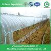 Verschiedene grünes Haus-multi Plastiküberspannungs-landwirtschaftliches Film-Gewächshaus