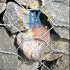 Cesta sextavada de Gabion do zinco elevado
