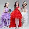 O anfitrião da saia amarga amarga de solo de Fleabane Fleabane dos trajes do estágio do aspeto do vestido das meninas