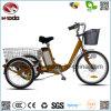 250Wリチウム電池の貨物電気三輪車