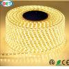 Indicatore luminoso della decorazione della striscia di SMD3528 3.5W/M LED per installazione