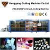 Macchina di plastica automatica di Thermoforming delle tazze/caselle/piatti/contenitori
