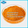 Curcumina natural al por mayor del polvo del extracto de la planta de la salud