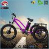 脂肪質のタイヤのバイクの合金フレームの自転車500Wの電気三輪車