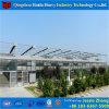 Venloの屋根のガラス温室の商業温室の製造業者