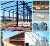 Poultry automatico Machinery in Chicken House con Steel Construction