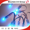 Enig-Color 12/9mm Fog Staat LED Lamp String voor LED Module