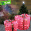 Indicatore luminoso del contenitore di regali di natale del LED per la decorazione di festa