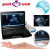 Equine, Bovine, Swine, Sheep, Cat, Dog - Maggie를 위한 3.5MHz Convex Probe를 가진 10 인치 Laptop Veterinary/Vet Ultrasound Scanner