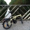 Preiswerter Falz-elektrisches Fahrrad Rseb-103