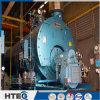 De biomassa stak de Dubbele Boiler van het Hete Water 1.0MPa van de Verbranding 5.6MW van Trommels Interne in brand