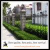 Ornamental superiore del germoglio rivestito della polvere nera rete fissa del giardino dai 4 piedi