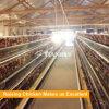Une cage de batterie automatique de poulet de couche de bâti pour la ferme avicole