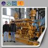 발전기 세트 생물 자원 기화 발전 시스템