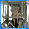 Cer Pig Meat Processing Machine in Slaughterhouse