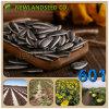2016最上質の601、5009、0409、3939、363の乾燥された未加工ヒマワリの種