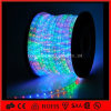 colore di alta luminosità di 12V SMD5050 che cambia l'indicatore luminoso della corda del LED