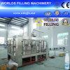 Автоматические 4 в 1 Bottle Liquid Fill Machine (CCCGF16-16-16-6)