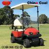 1 тележка гольфа гольфа места дефектная миниая электрическая