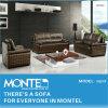 柔らかい家具、居間のソファー、革ソファーベッド