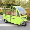 Оптовый общий дешевый и самый лучший Electro-Трицикл