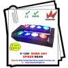 최신 Sale 8PCS*12W RGBW 4in1 Spider Beam Light