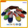 Schoeisel van de Manier van de Schoenen van het Canvas van China het Kleurrijke (RW50751)