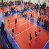 8mm Cheapest Price를 가진 2016 최신 Sale PVC/Vinyl Volleyball Sports Flooring