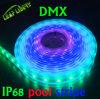 Diodo emissor de luz endereçável DC24V_Dome_Cove 6LEDs de Digitas RGB, luz baixa redonda do ponto do PVC do PVC DMX
