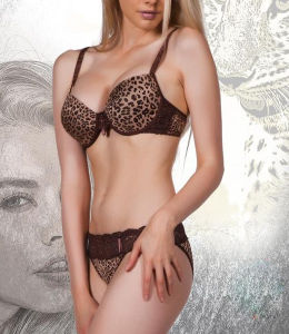 Sexy Bra & Brief Sets with Leopard Print Series/Leopard Lingerie Set for Lady