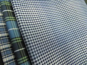 100% Cotton Yarn Dyed Check Poplin for Shirts pictures & photos