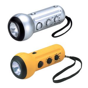 Fancy Radio With Light