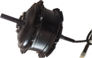 Electric Wheel Hub Motor for Bicycle