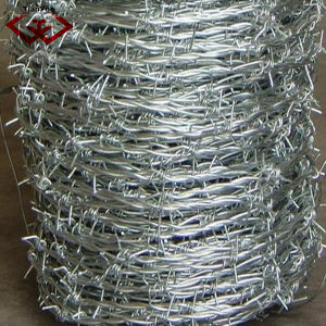 Barbed Wire (TYF-028) pictures & photos