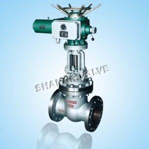 Flanged Electric Globe Valve (Type: J941H/Y/W)