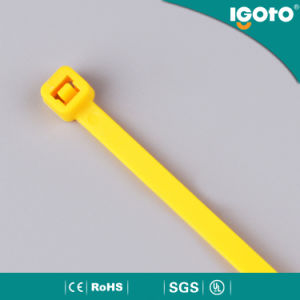 Nylon Cable Tie pictures & photos