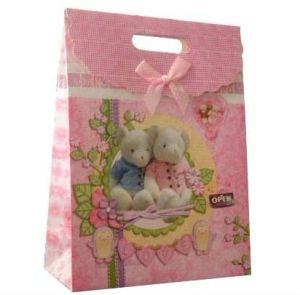 Fashion Paper Gift Bag