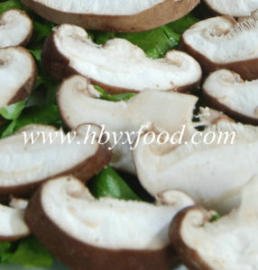 Dehydrated Mushroom Slices 2016 Crop pictures & photos
