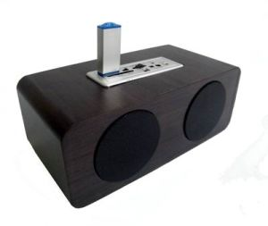Mini Sound Box with Card Reader (DM10-02)