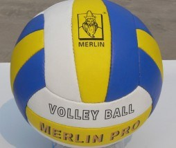 Volleyball (SJB-SP001)
