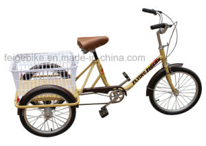 Cheap and Simple Three Wheel Cargo Tricycle (FP-TRB023) pictures & photos
